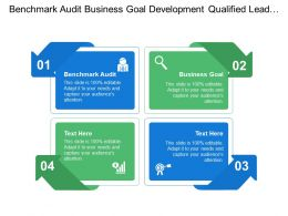 Benchmark Audit Business Goal Development Qualified Lead Buyers Persons