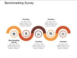 Benchmarking Survey Ppt Powerpoint Presentation File Model Cpb