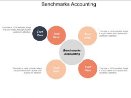 Benchmarks Accounting Ppt Powerpoint Presentation Styles Outline Cpb
