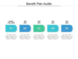 Benefit Plan Audits Ppt Powerpoint Presentation Ideas Deck Cpb
