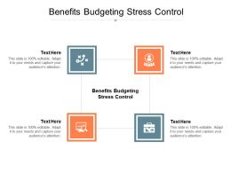 Benefits Budgeting Stress Control Ppt Powerpoint Presentation Gallery Professional Cpb