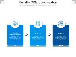 Benefits CRM Customization Ppt Powerpoint Presentation Model Example Topics Cpb