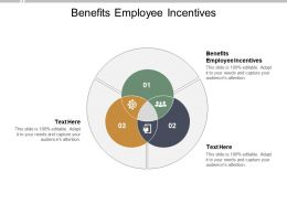 Benefits Employee Incentives Ppt Powerpoint Presentation Portfolio Elements Cpb