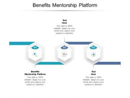 Benefits Mentorship Platform Ppt Powerpoint Presentation Styles Infographics Cpb