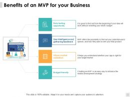 Benefits Of An Mvp For Your Business Budget Ppt Powerpoint Presentation Diagram Ppt