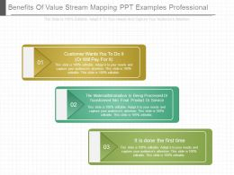 Benefits Of Value Stream Mapping Ppt Examples Professional