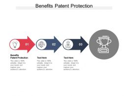 Benefits Patent Protection Ppt Powerpoint Presentation Infographic Template Example File Cpb