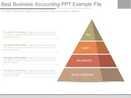 Best Business Accounting Ppt Example File