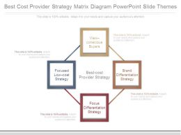 Best Cost Provider Strategy Matrix Diagram Powerpoint Slide Themes