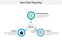 Best Data Reporting Ppt Powerpoint Presentation File Elements Cpb