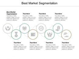 Best Market Segmentation Ppt Powerpoint Presentation Pictures Graphics Cpb
