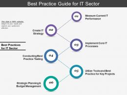 Best Practice Guide For It Sector