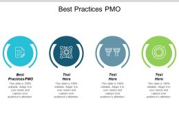 Best Practices PMO Ppt Powerpoint Presentation Pictures Display Cpb