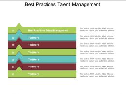 Best Practices Talent Management Ppt Powerpoint Presentation File Gallery Cpb