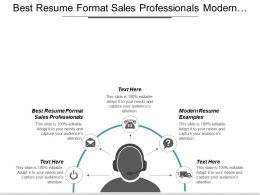 Best Resume Format Sales Professionals Modern Resume Examples Cpb