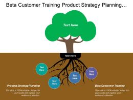 Beta Customer Training Product Strategy Planning Initiate Demo