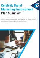 Bi Fold Celebrity Brand Marketing Endorsement Plan Summary Document Report PDF PPT Template