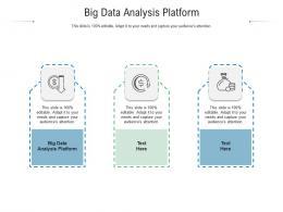 Big Data Analysis Platform Ppt Powerpoint Presentation Pictures Deck Cpb