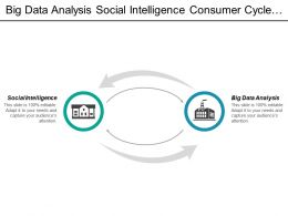 Big Data Analysis Social Intelligence Consumer Cycle Streaming Segmentation