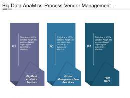 Big Data Analytics Process Vendor Management Best Practices Cpb