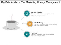 Big Data Analytics Tier Marketing Change Management Leadership Cpb