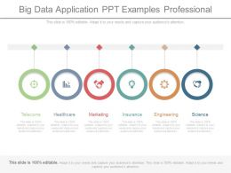 Big Data Application Ppt Examples Professional