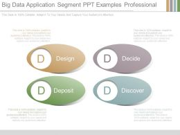 Big Data Application Segment Ppt Examples Professional