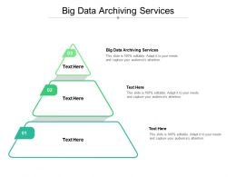 Big Data Archiving Services Ppt Powerpoint Presentation Professional Skills Cpb