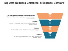 Big Data Business Enterprise Intelligence Software Ppt Powerpoint Presentation Pictures Information Cpb