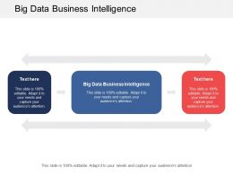 Big Data Business Intelligence Ppt Powerpoint Presentation Gallery Background Images Cpb