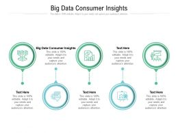 Big Data Consumer Insights Ppt Powerpoint Presentation File Vector Cpb