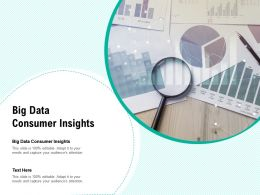 Big Data Consumer Insights Ppt Powerpoint Presentation Summary Example Cpb