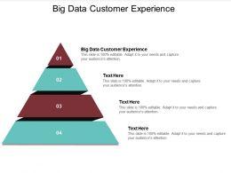 Big Data Customer Experience Ppt Powerpoint Presentation Summary Graphics Cpb