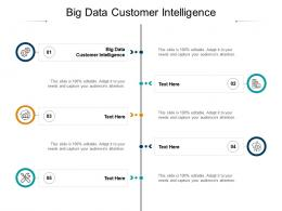 Big Data Customer Intelligence Ppt Powerpoint Presentation Gallery Show Cpb