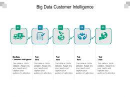 Big Data Customer Intelligence Ppt Powerpoint Presentation Templates Cpb