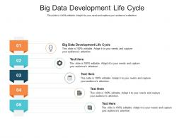 Big Data Development Life Cycle Ppt Powerpoint Presentation Infographics Grid Cpb