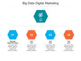 Big Data Digital Marketing Ppt Powerpoint Presentation Pictures Designs Cpb