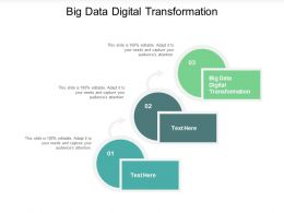 Big Data Digital Transformation Ppt Powerpoint Presentation Summary Influencers Cpb