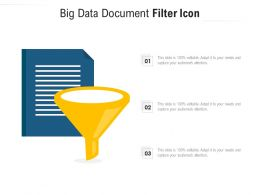 Big Data Document Filter Icon