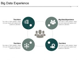 Big Data Experience Ppt Powerpoint Presentation Pictures Demonstration Cpb