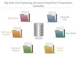 Big Data File Positioning Structure Powerpoint Presentation Examples