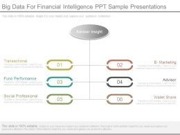 Big Data For Financial Intelligence Ppt Sample Presentations