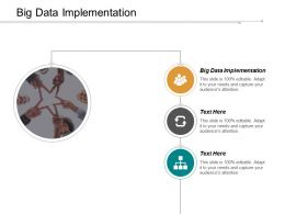Big Data Implementation Ppt Powerpoint Presentation Infographic Template Format Ideas Cpb