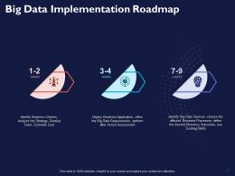 Big Data Implementation Roadmap Ppt Powerpoint Presentation Summary Show