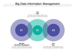 Big Data Information Management Ppt Powerpoint Presentation Model Pictures Cpb