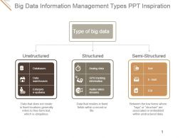 Big Data Information Management Types Ppt Inspiration