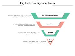 Big Data Intelligence Tools Ppt Powerpoint Presentation Outline Layouts Cpb