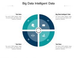 Big Data Intelligent Data Ppt Powerpoint Presentation Pictures Information Cpb