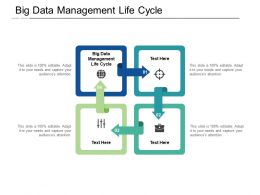 Big Data Management Life Cycle Ppt Powerpoint Presentation Model Slideshow Cpb