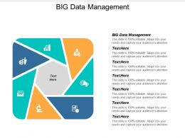 Big Data Management Ppt Powerpoint Presentation Gallery Icon Cpb